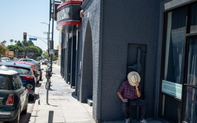 Hiding in Plain Site Hollywood
